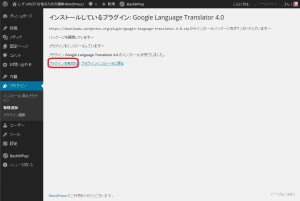 Googleの言語選択プラグイン有効化
